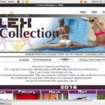 Flex Collection Best Videos