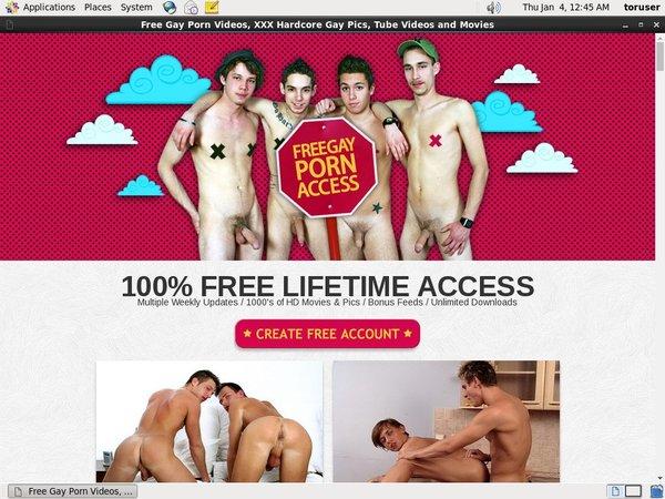 Free Gay Porn Access New Hd